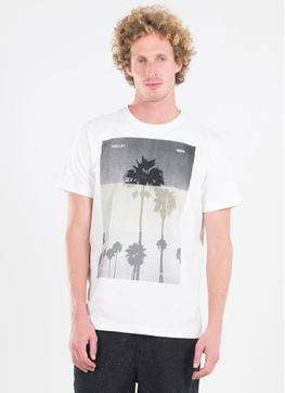 116008_654_1_M_T-SHIRT-SILK-PALM-TREES-TYPE